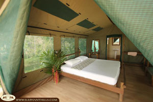 Elephant Hills Camp & schwimmendes Rainforest Camp